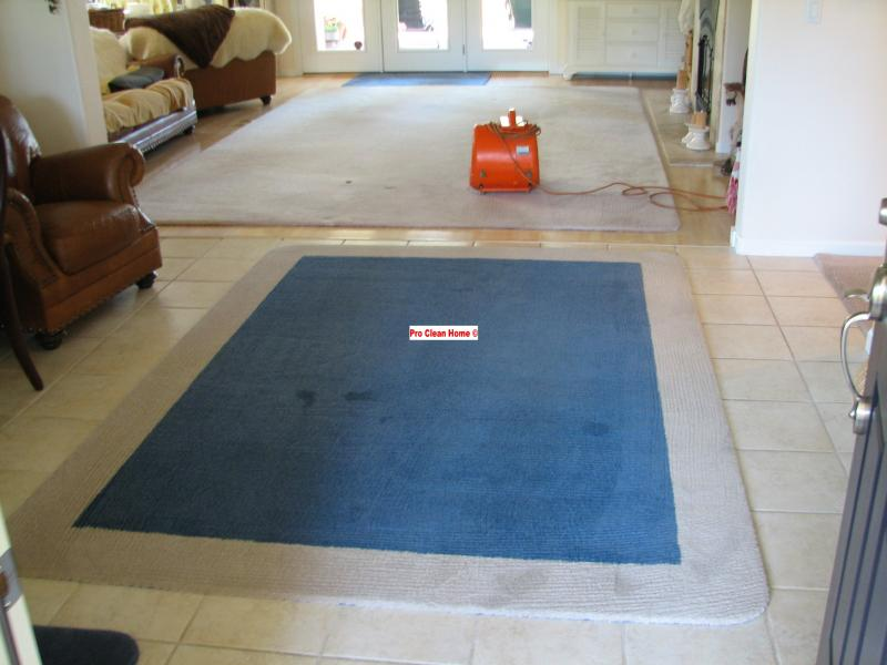 Pro Clean Hme Area Rug Cleaning